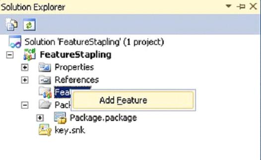 featureStaplingPrj4